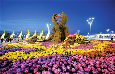 花卉博览会门票